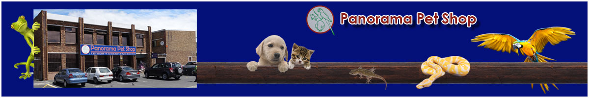 Panorama Pet Shop Front Page Ad